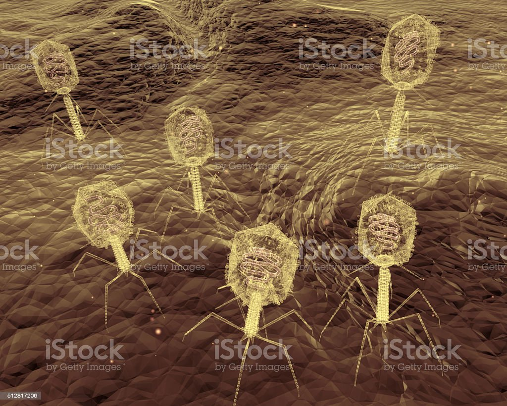 Bacteriophage Viruses Attacks Bacteria stock photo