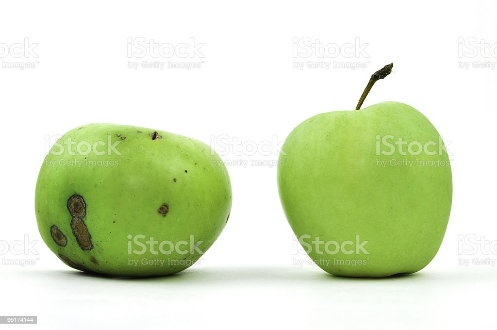 Bad and Good Apple royalty-free stock photo