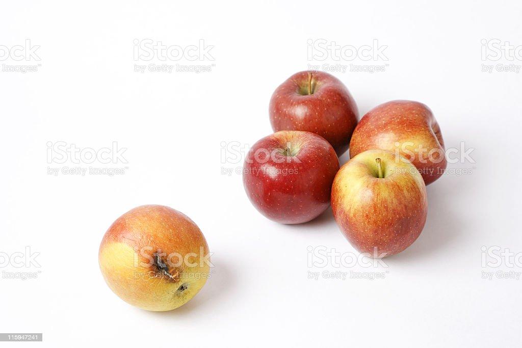 Bad apple royalty-free stock photo