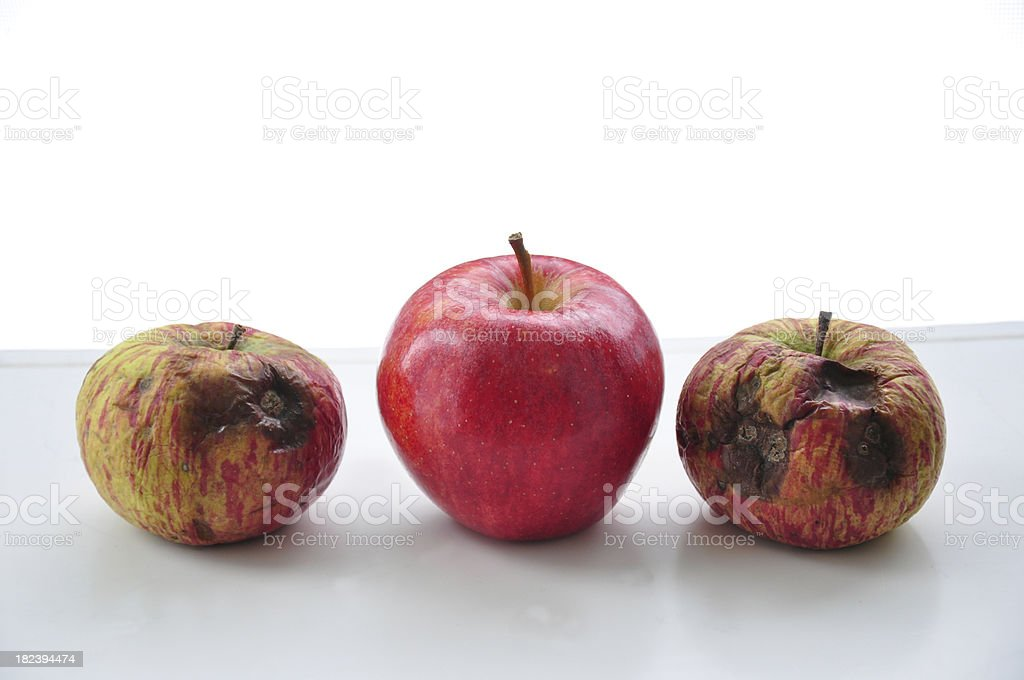 Bad Apples and One Good Apple royalty-free stock photo
