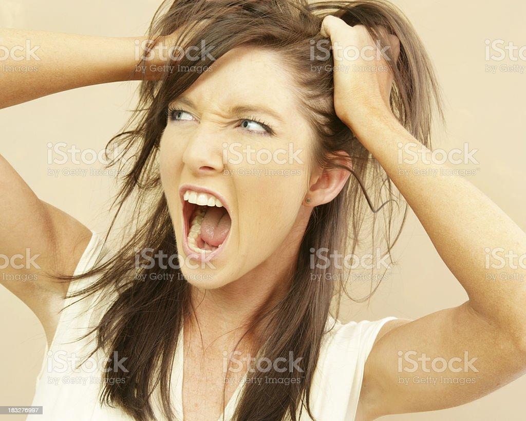 Bad Hair Day! royalty-free stock photo