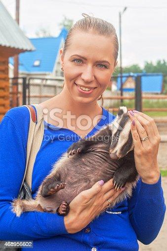 istock badger 468956602