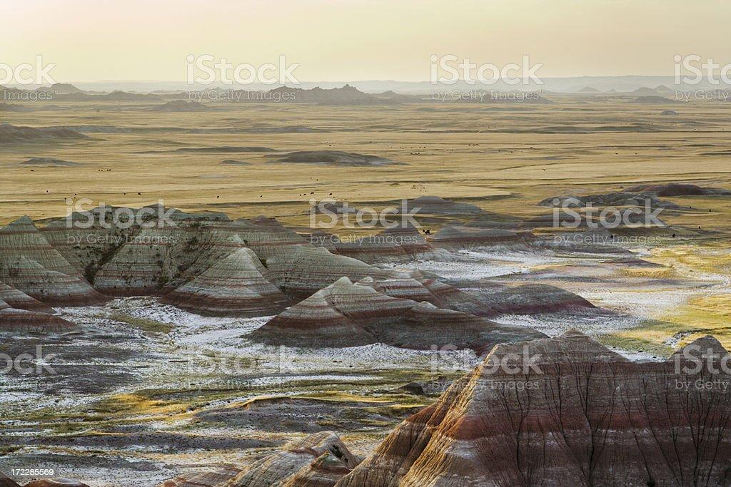 Badlands Canyon Morning stock photo