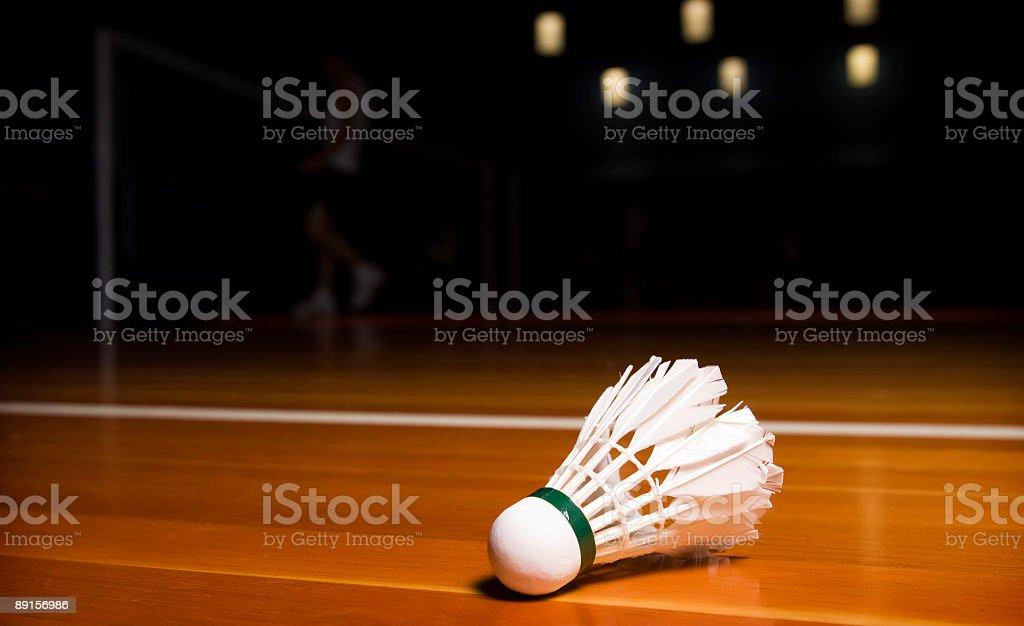 Badminton Birdie stock photo