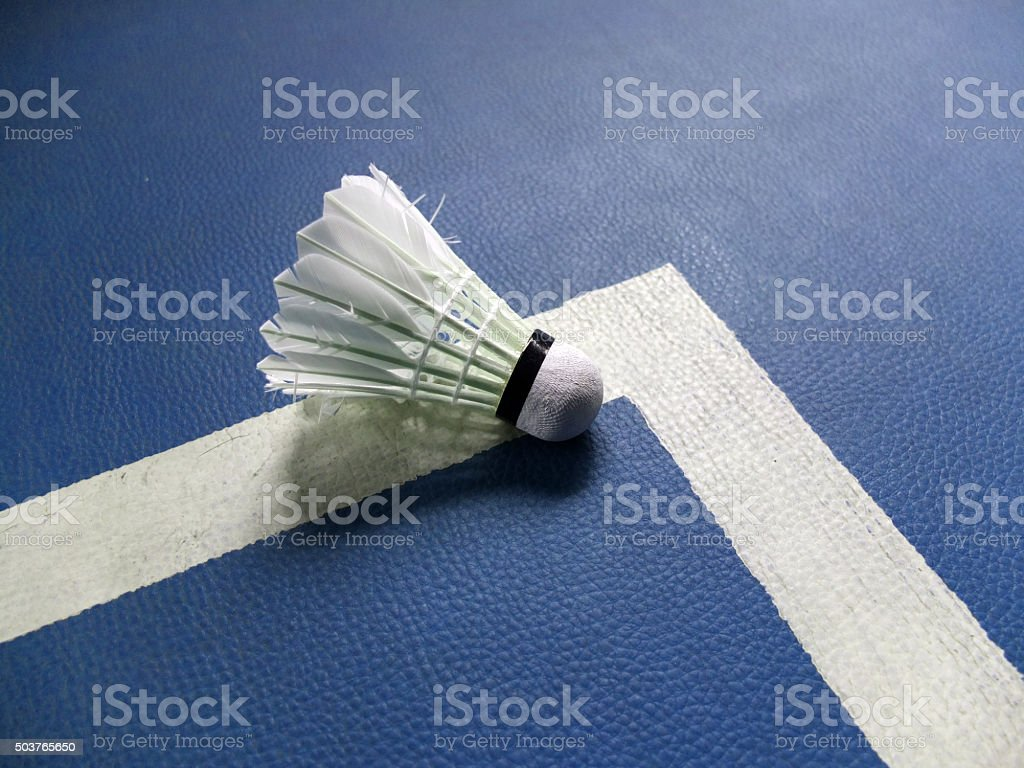 badminton courts with shuttlecock for players competing stock photo