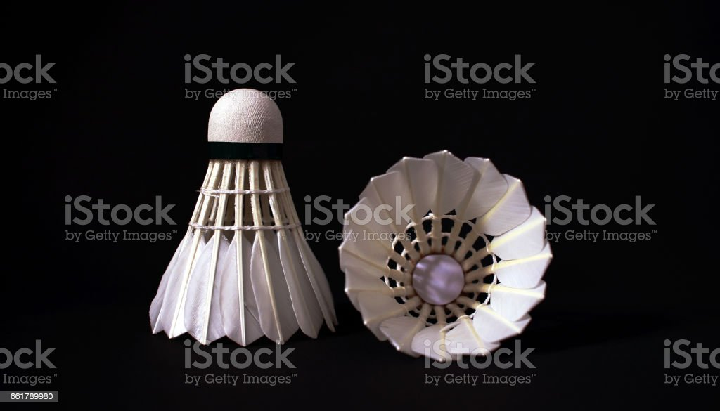 Badminton feather shuttles stock photo