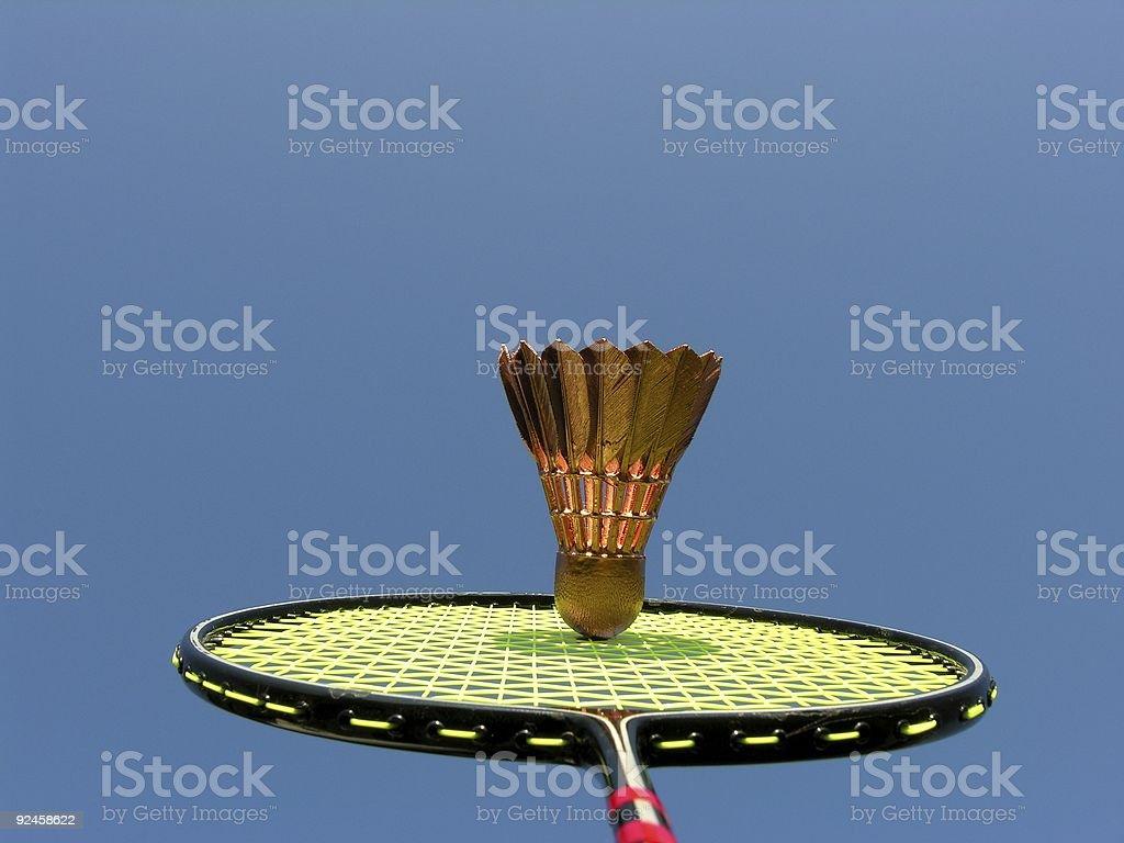 Badminton Gold royalty-free stock photo