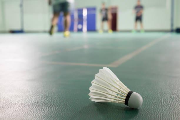 Badminton dans le domaine - Photo