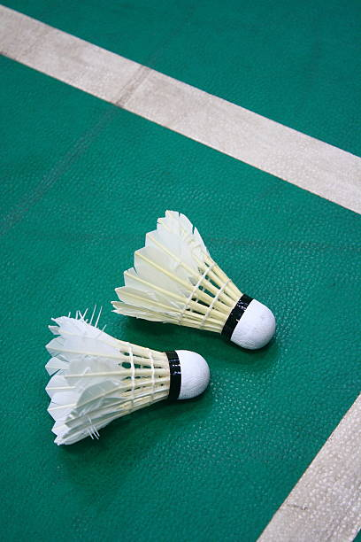 badminton in the stadium - shuttlecock stock pictures, royalty-free photos & images