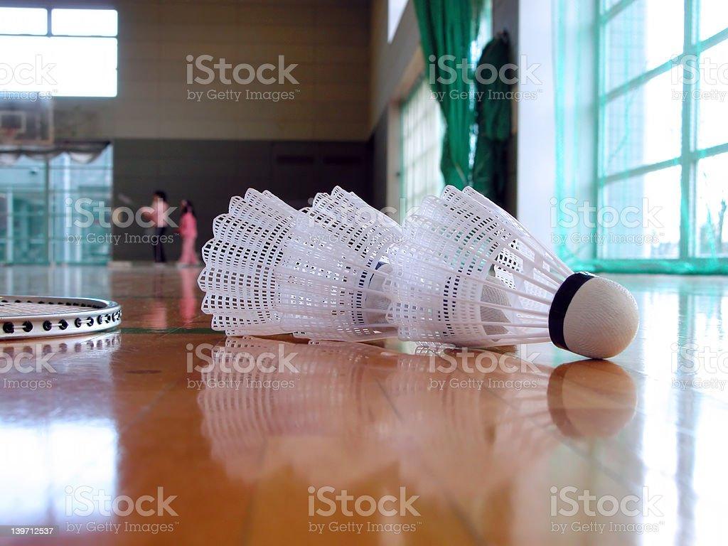Badminton indoor royalty-free stock photo