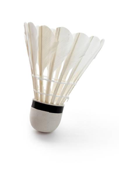 Badminton - Photo