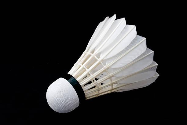 Badminton Volant de Badminton - Photo