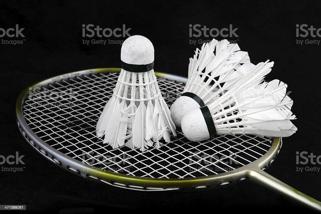 Badminton shuttlecocks and Racquet royalty-free stock photo