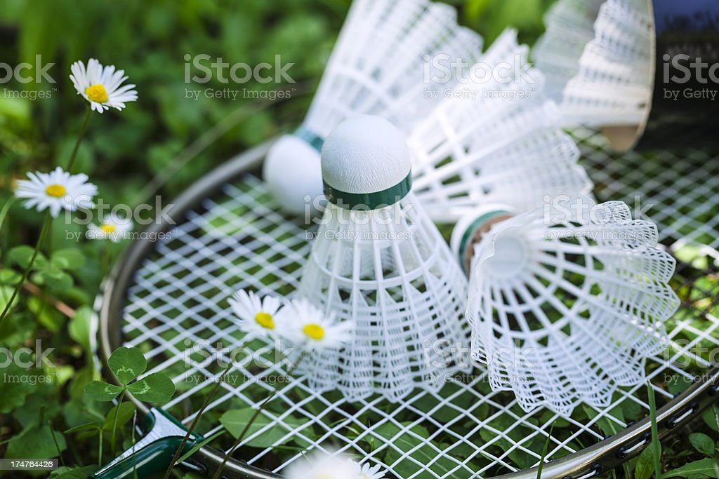 Badminton shuttlecocks royalty-free stock photo