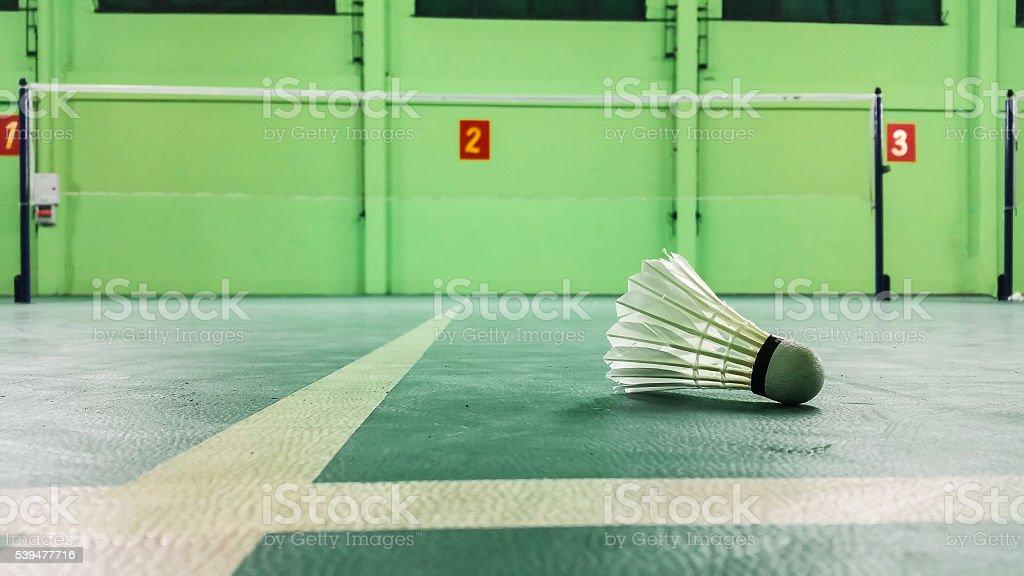 badminton.Hanging in the badminton net badminton stock photo