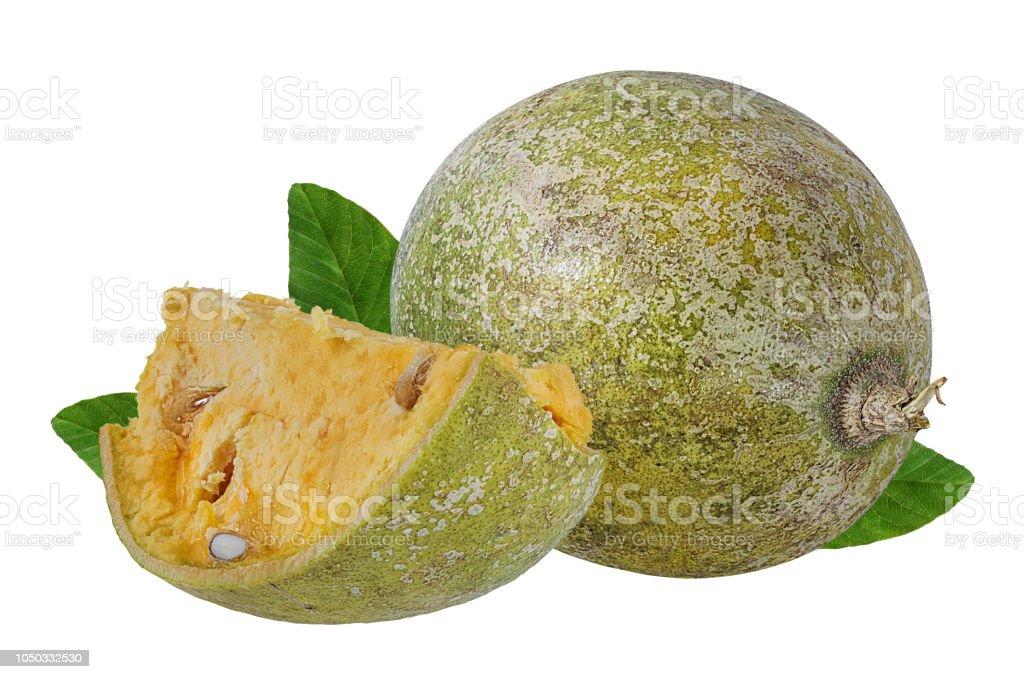 bael fruits or wood apple fruit (Aegle marmelos) on a white stock photo
