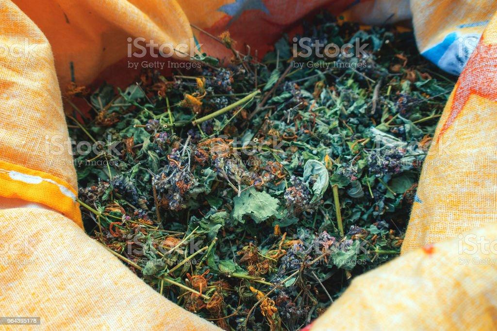 Saco com coleção de ervas secas - Foto de stock de Coleção royalty-free