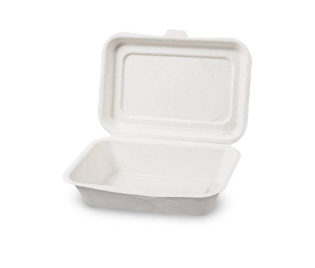 Bagasse box for food isolated on white background stock photo