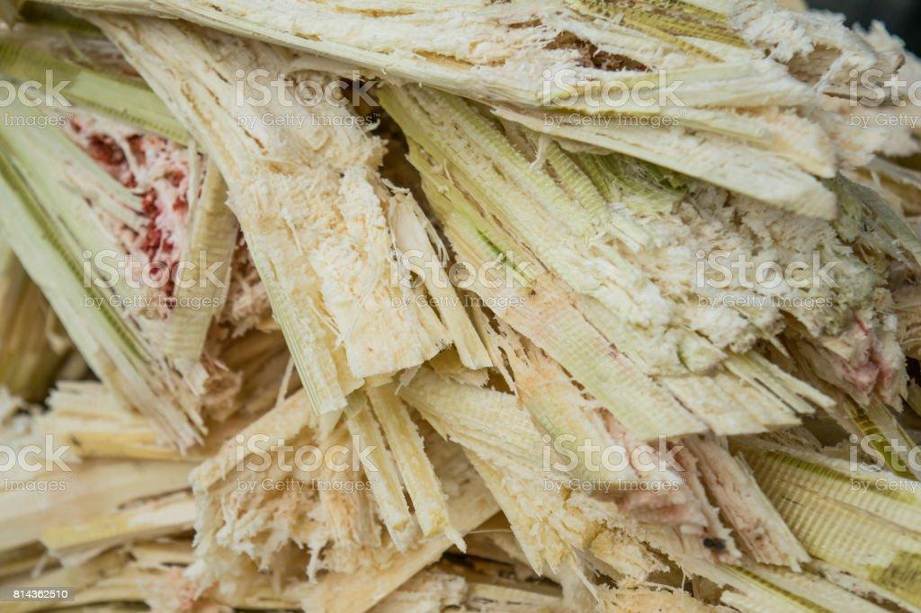 bagasse of sugarcane - selective focus stock photo