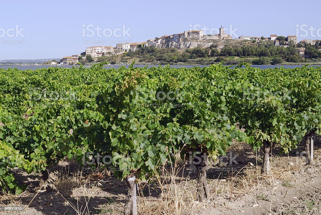 Bages (Languedoc-Roussillon, France), town and vineyards royalty-free stock photo