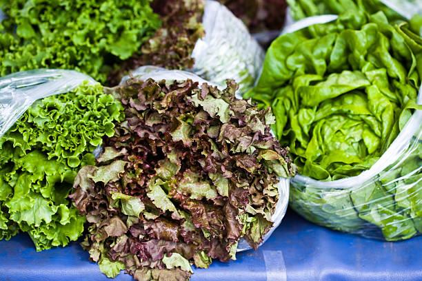 Bagged Lettuce stock photo