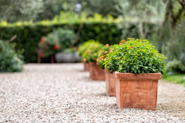 bagno vignoni, italië stad of dorpsstad in toscane en close-up van groene bloemdecoraties op de zomer dag niemand architectuur stenen ground - bloempot stockfoto's en -beelden