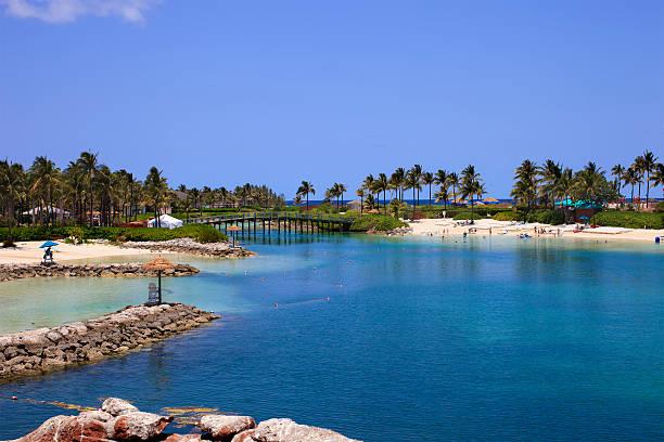 bahamas beach view - nassau new providence stockfoto's en -beelden