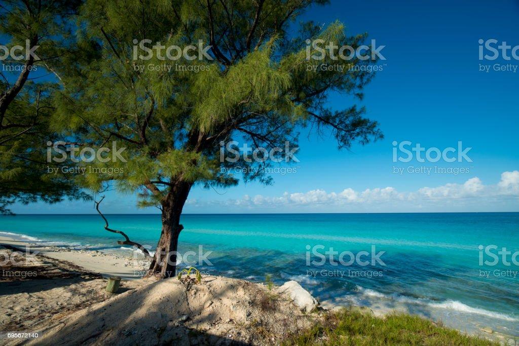 bahamas Bimini island stock photo