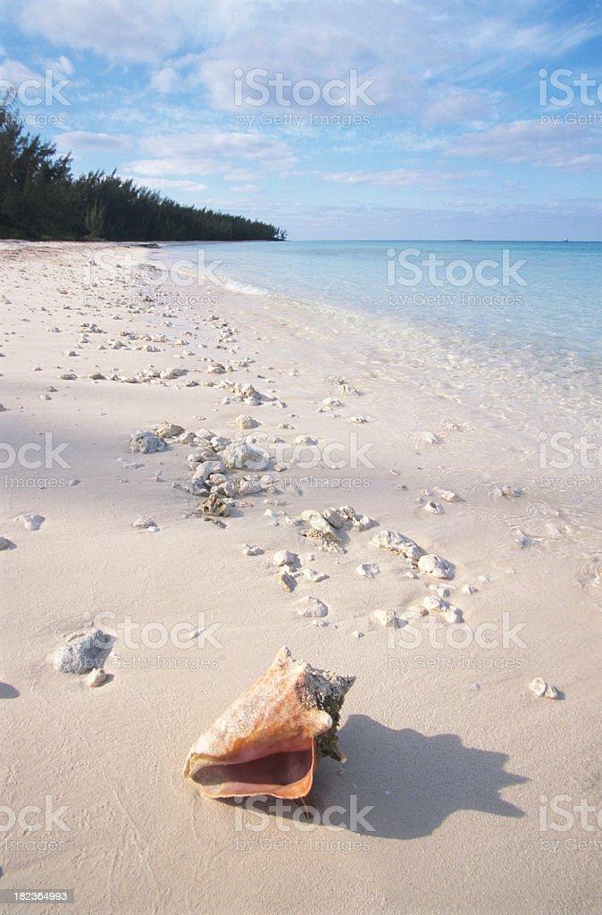 Bahamas royalty-free stock photo