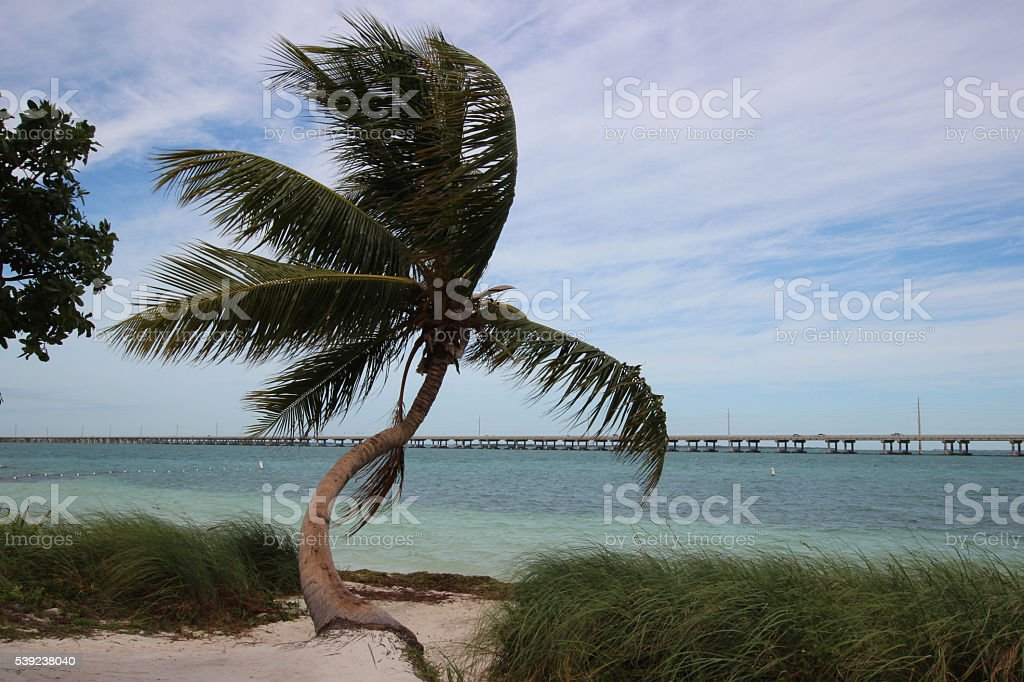 bahia honda state park royalty-free stock photo
