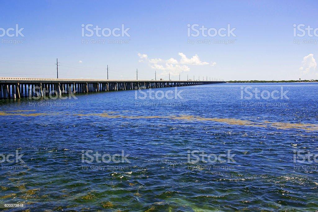 Parque Estatal da Baía Funda foto de stock royalty-free