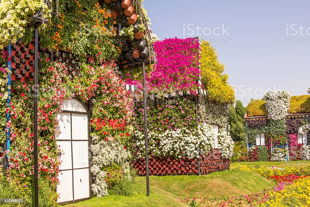 bahouses of flowers in the park Dubai Miracle Garden stock photo