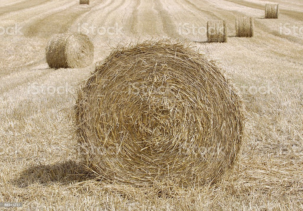 Bails Of Hay. royalty-free stock photo