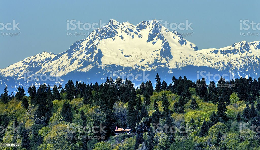 Insel Bainbridge Island Olymp Snow Mountain Olympic-Nationalpark Washington – Foto