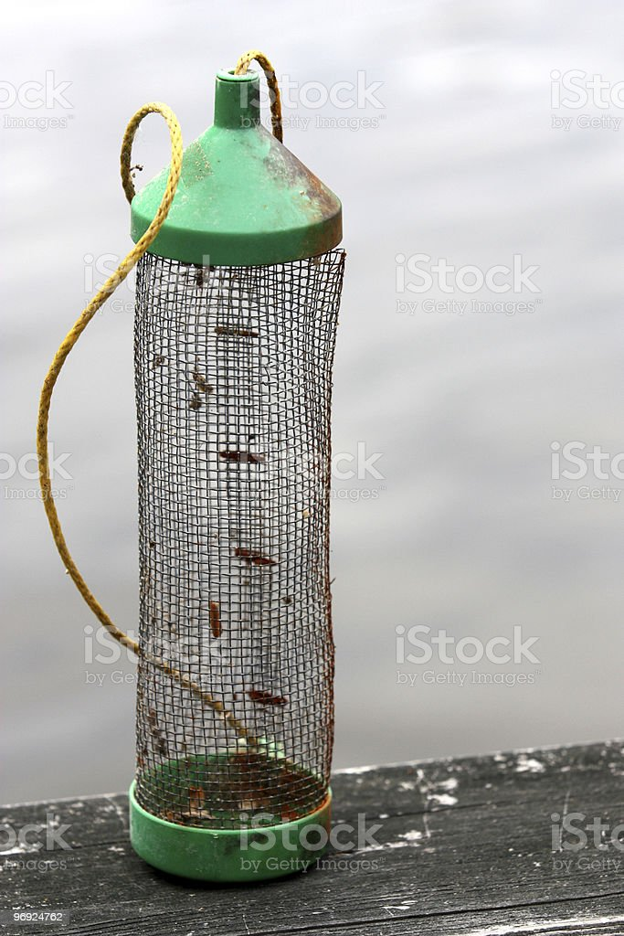 Bait Cricket Container royalty-free stock photo