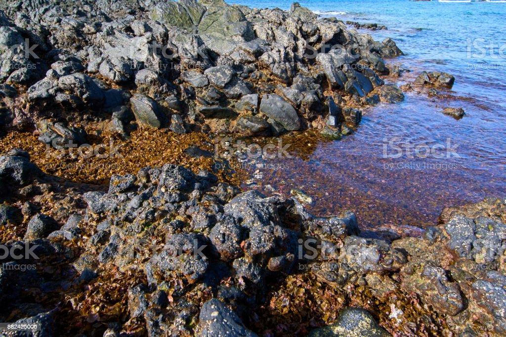 Bajos de Bristol Beach en Corralejo, Fuerteventura - foto de stock