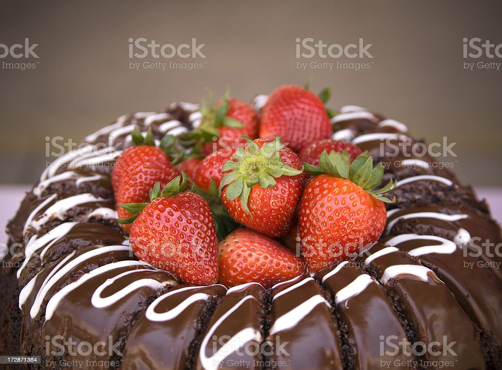 Baked Chocolate Bundt Cake & Fruit Dessert with Fresh Strawberries royalty-free stock photo