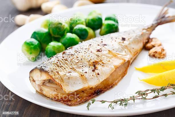 Cocido Caballa Foto de stock y más banco de imágenes de Al horno