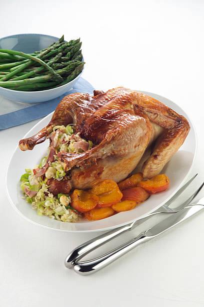 Baked Turkey Dinner stock photo