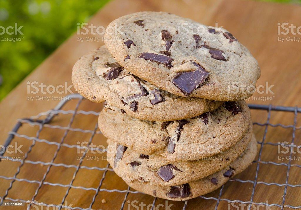Baked & Warm Dark Chocolate Chip Homemade Cookies on Baking Rack royalty-free stock photo