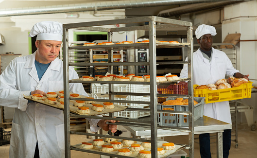 Experienced baker placing tray with formed raw dough products on rack trolley for proofing in small bakery