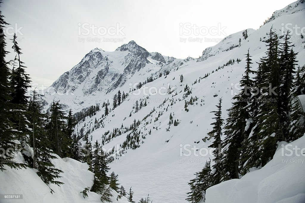 Baker - Ski Area 5 royalty-free stock photo