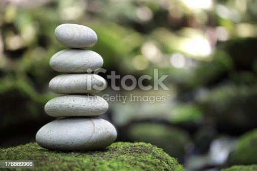 istock Balance and harmony in nature 176889966