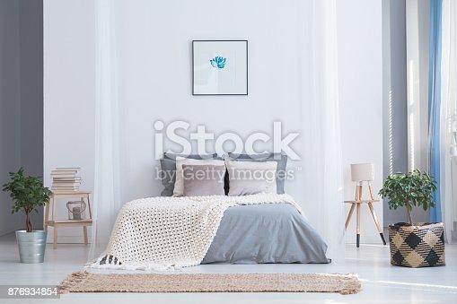 istock Balanced bedroom interior with plants 876934854