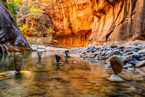 Balanced Stones in The Narrows - Zion National Park Stones balanced in the waters of The Narrows in Zion National Park.  Red sandstone background.  Tree with yellow leaves. The time of year is Autumn. zion national park stock pictures, royalty-free photos & images