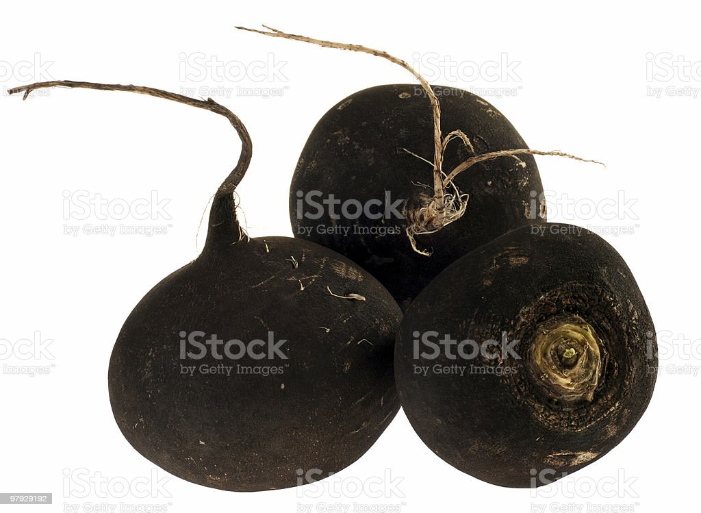 Balck radish royalty-free stock photo