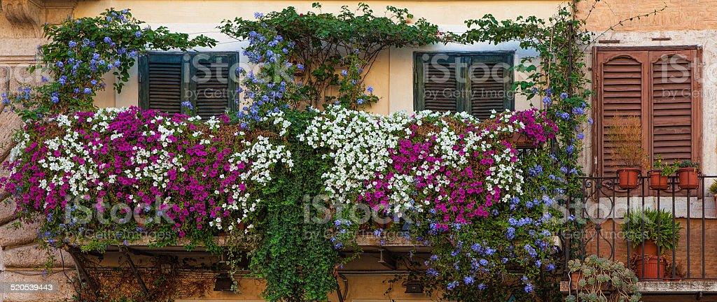 Balconies on piazza Navona stock photo