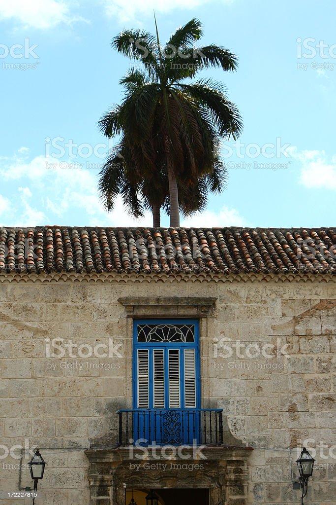 Balcony and palm stock photo