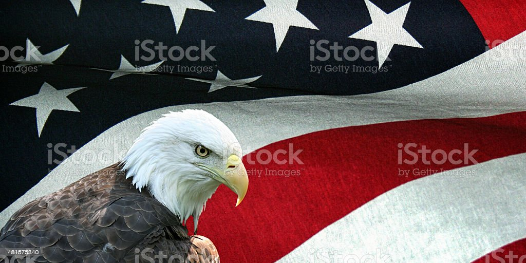 Bald Eagle and Textured Cloth American Flag stock photo