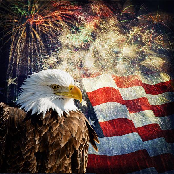 Bald Eagle &  Fireworks stock photo